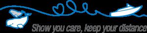 Logo beluga bateau moteur_RGB_ANG_grand